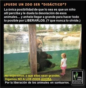 animales 15